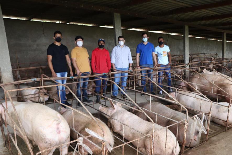 FrigBahia inicia a articulação da integração da produção de suínos da região com a indústria em Pintadas