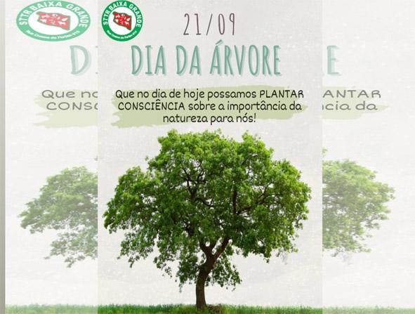 Que o dia de hoje passamos a Plantar Consciência sobre a importância da Natureza para nós, mensagem do STTR Baixa Grande